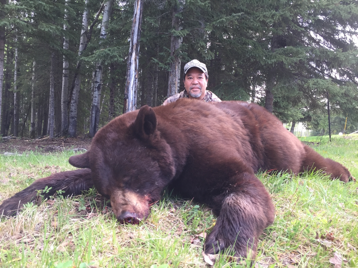 Bear Hunts Photo