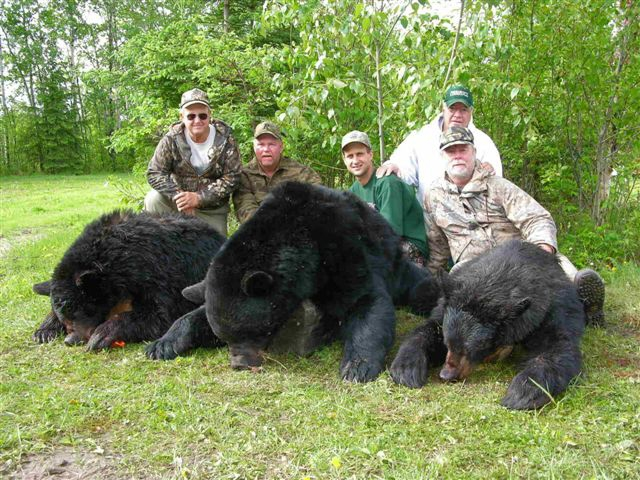 Bear Hunting Rates/Dates
