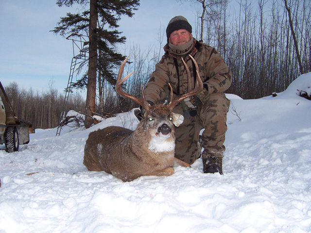 Whitetail Hunts